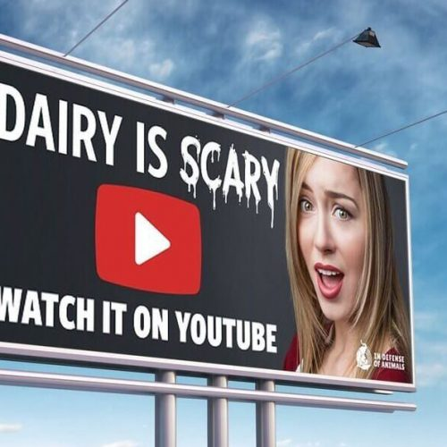 Dairy is scary