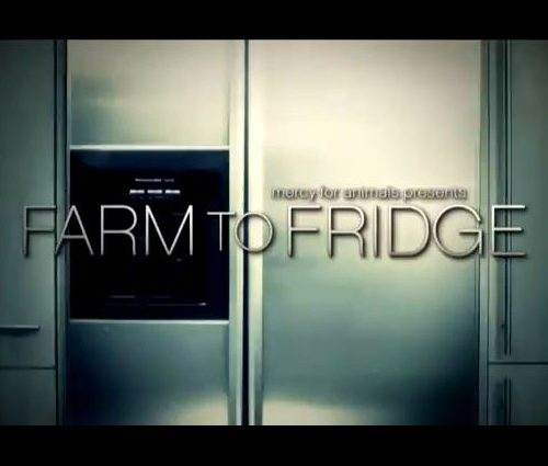 from_farm_to_fridge