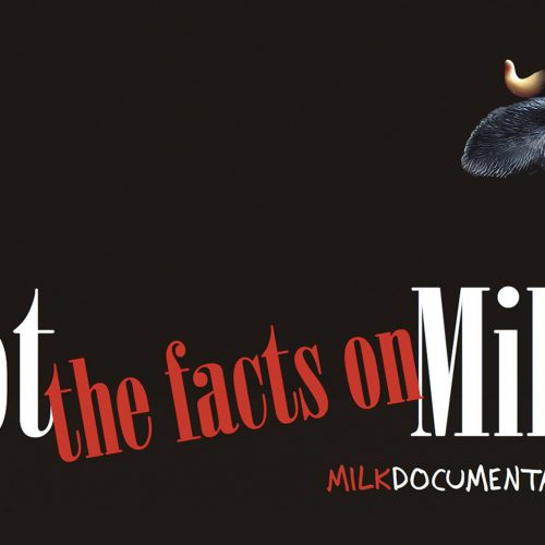 got_the_facts_on_milk