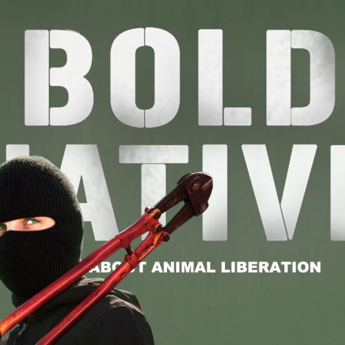 bold_native