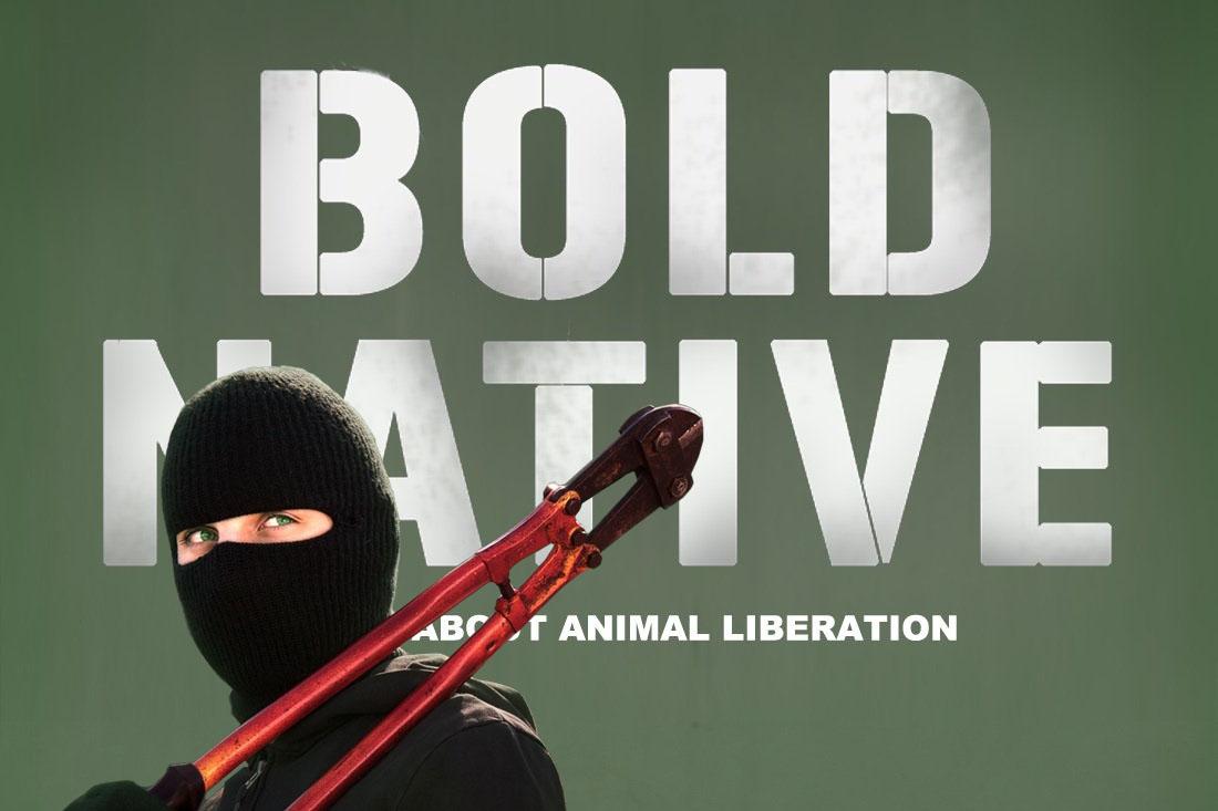 bold_native