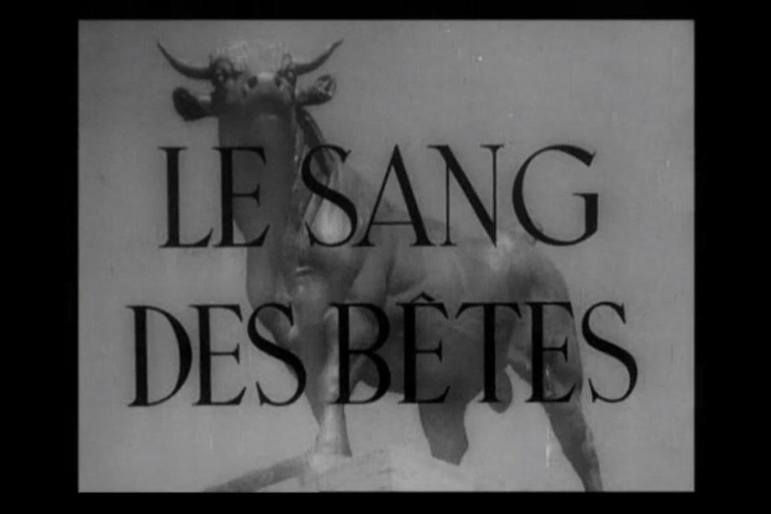 la_sang_des_betes