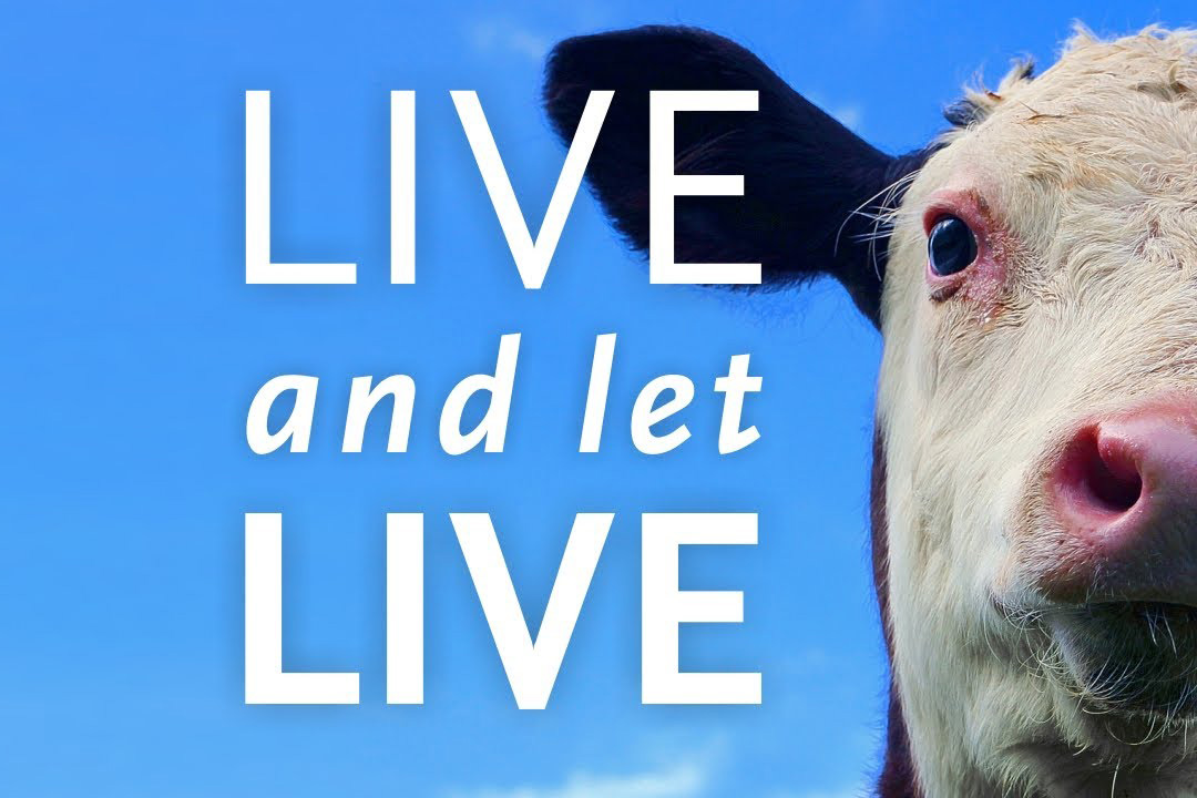 live_and_let_live